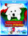 Przyjaciel Świętego Mikołaja - Movie / Film