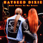 Hair Down To My Grass - Hayseed Dixie