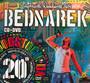 Przystanek Woodstock 2014 - Bednarek