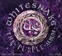 Purple Album - Whitesnake
