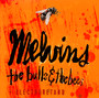 The Bulls & The Bees - Melvins