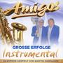 Grosse Erfolge Instrumental - Amigos