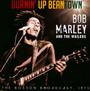 Burnin' Up Beantown - Bob Marley