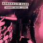 Adrenalin Baby-Johnny Marr Live - Johnny Marr