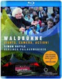 Lumieres, Camera, Action ! - Waldbohne 2015