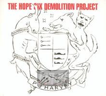 The Hope Six Demolition Project - P.J. Harvey