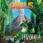 Ibufornia - Cassius