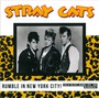 Rumble In New York City! - The Stray Cats