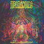 Reliquary For A Dreamed Of World - 11paranoias