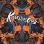 The Kaleidoscope - Kaleidoscope
