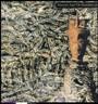 Juju - Siouxsie & The Banshees