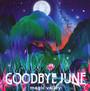 Magic Valley - Goodbye June