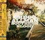 Southern Blood - Gregg Allman