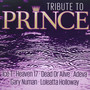 A Tribute To Prince - Tribute to Prince