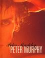 Five Albums - Peter Murphy