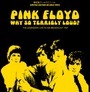 Why So Terribly Loud? - Inca Gold - Pink Floyd