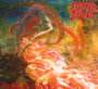 Blessed Are The Sick - Morbid Angel