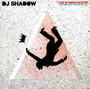 Live In Mountain Has Fallen Tour - DJ Shadow