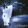 Almost A Dance - The Gathering