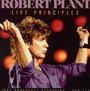Live Principles - Robert Plant