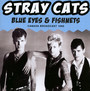 Blue Eyes & Fishnets - The Stray Cats