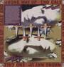 Wrong Way Up - Brian Eno / John Cale