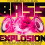 Bass Explosion - V/A
