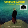Yes, I Have Ghosts - David Gilmour