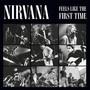 Feels Like The First Time - Nirvana