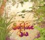 Sia - Solstice