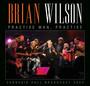 Practise Man, Practise - Brian Wilson