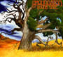 Young Tree - Groundation