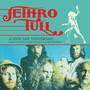 A New Day Yesterday: Rare & Unreleased Tracks & Radio Sessio - Jethro Tull