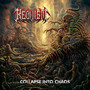 Collapse Into Chaos - Requiem