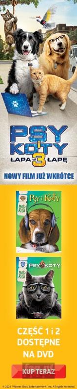 Psy I Koty 3 W Kinach - Promo
